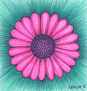 Pens Drawings Posters - Pink Flower with Purple Center Poster by Nina Kuriloff