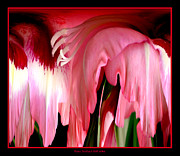Warp Prints - Pink Gladiolas Abstract Print by Rose Santuci-Sofranko