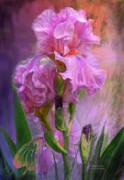 Pink Goddess Print by Carol Cavalaris