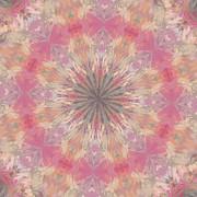 Deborah Benoit - Pink Healing Mandala