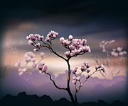 Bedros Awak Art - Pink Magnolia - Dark Version by Bedros Awak
