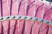 Billboard Signs Prints - Pink Marquee in Lights Print by Art Block Collections