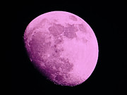 Man-in-the-moon Photo Prints - Pink Moon Print by Gallery Three