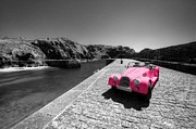 Morgan Art - Pink Morgan at Mullion  by Rob Hawkins