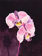 Birthday Cards Painting Originals - Pink Orchid by Irina Sztukowski