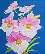 Carol Sabo - Pink Orchids