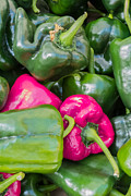 Green Grocer Prints - Pink Peppers Print by Susan Colby