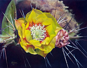 Greeting  Cards. Arizona Paintings - Pink Prickly Pear Yellow Cactus Flower by Mary Dove