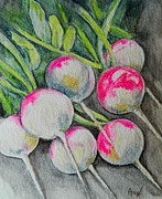 Amy Burczyk - Pink Radishes