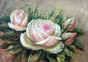 Anke Wheeler - Pink Rose and Rose Buds...