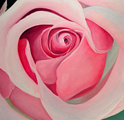 Laraine Wade-Butter - Pink Rose