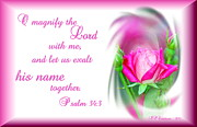 Audrey Woods - Pink Rose Psalm 34 3 