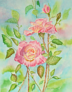 Pink Paintings - Pink Roses and Bud by Kathryn Duncan