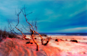 Abstract Art Prints Digital Art Framed Prints - Pink Sands Blue Sky - Outer Banks I Framed Print by Dan Carmichael