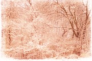 Suzanne Powers - Pink Snow Sunset In...