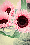 Vase Mixed Media Posters - Pink Sunflowers Poster by Angela Doelling AD DESIGN Photo and PhotoArt