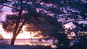 Rogerio Mariani - Pink sunrise