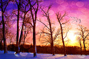 Snow Scenes Metal Prints - Pink To Home Metal Print by Emily Stauring