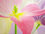 Purple Tulip Paintings - Pink Tulip by Laura Wilson