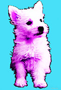 Sharon Cummings Posters - Pink Westie - West Highland Terrier Art by Sharon Cummings Poster by Sharon Cummings