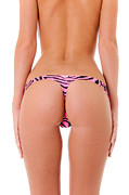 Long-underwear Posters - Pink Zebra Thong Poster by Jt PhotoDesign