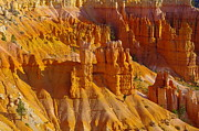 Southern Utah Prints - Pinnicles At Sunset Point Bryce Canyon National Park Print by Jeff  Swan