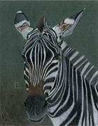 Stripe Drawings Originals - Pinny by Angie Deaver