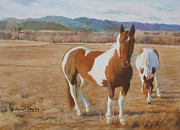Front Range Painting Prints - Pinto Horses on the Front Range Print by Daniel Dayley