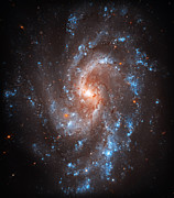 Space Art - Pinwheel Galaxy by The  Vault - Jennifer Rondinelli Reilly