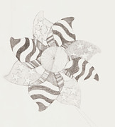 Fourth Of July Drawings Prints - Pinwheel Print by Matthew  Gartland