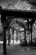 Black And White Framed Prints - Pioneer Square Pergola Framed Print by David Patterson