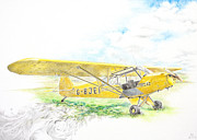 Featured Drawings - Piper Cub by Laura Russell