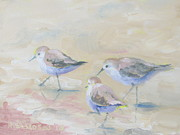 Sea Birds Paintings - Pipers Three by Susan Richardson