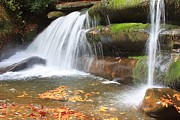 Pisgah Photographs Posters - Pisgah National Forest Waterfall Poster by Michael Weeks