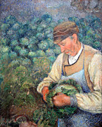 Pissarro Prints - Pissarros The Gardener -- Old Peasant with Cabbage Print by Cora Wandel