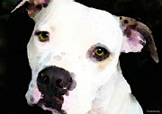 Dog Rescue Digital Art Metal Prints - Pit Bull Art - Im A Lover Metal Print by Sharon Cummings