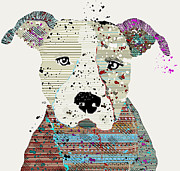 Pit Bull Mixed Media Metal Prints - Pit Bull Graffiti Metal Print by Brian Buckley