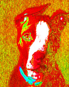 Dogs Digital Art Metal Prints - PitBull Pop Art - 20130125v2 Metal Print by Wingsdomain Art and Photography