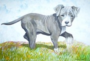 Limited Edition Mixed Media - Pitbull Puppy by Martial Martin