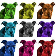 James Ahn - Pitbull puppy pop art -...