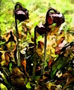 Labrador Digital Art - Pitcher Plant Abstraction by Barbara Griffin