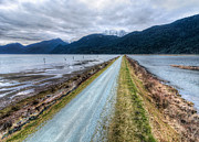 Gravel Road Prints - Pitt Lake Road Print by James Wheeler