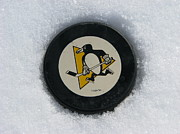 Michael Krek - Pittsburgh Penguins