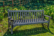 Bench Metal Prints - Place to Rest Metal Print by Adrian Evans