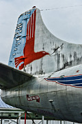 Eastern Air Lines Prints - Plane Tail Wing Eastern Air Lines Print by Paul Ward