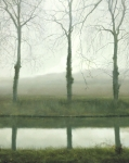 South Of France Framed Prints - Plane Trees Canal Du Midi Framed Print by Thomas Darnell