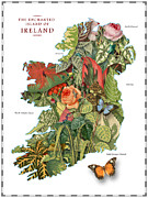 Watercolor Map Art - Plant Map of Ireland by Gary Grayson