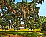 Evergreen Plantation Prints - Plantation oil Print by Steve Harrington