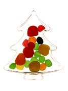 Freshness Photo Posters - Plastic Christmas tree containing sweet Poster by Bernard Jaubert