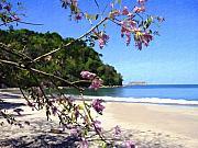 Playa Espadillia Sur Manuel Antonio National Park Costa Rica Print by Kurt Van Wagner
